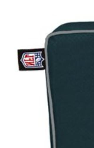 NFL Eagles SEAT Bleacher Game