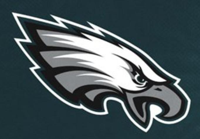 NFL STADIUM SEAT Handle Bleacher Pad Game Day